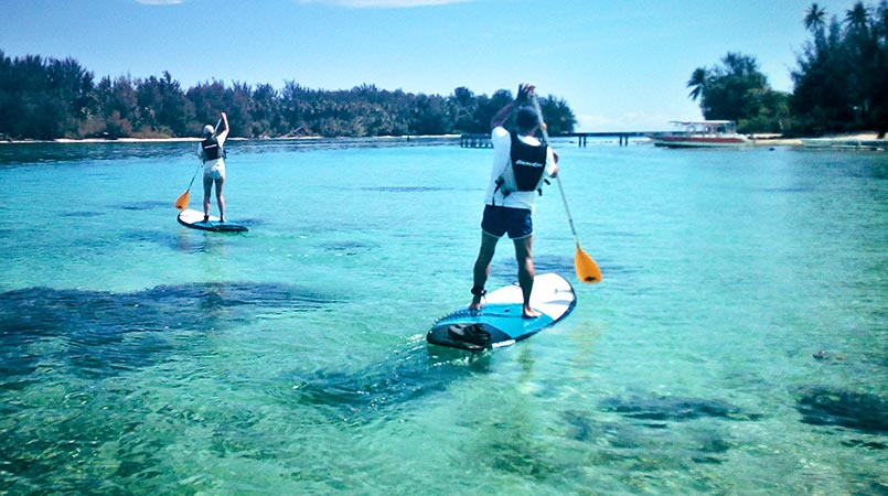 Fare Arana excursion paddle